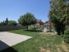 047_backyard1