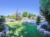 030_backyard1